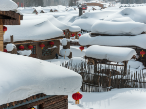 8D HARBIN+ SNOW TOWN IN NORTH EASTERN CHINA